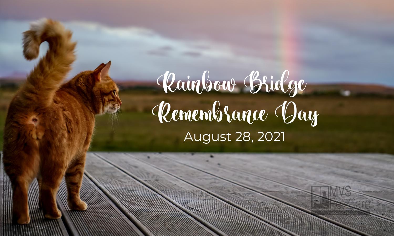 Rainbow Bridge Remembrance