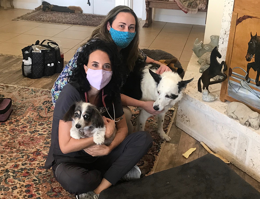 at home vet services